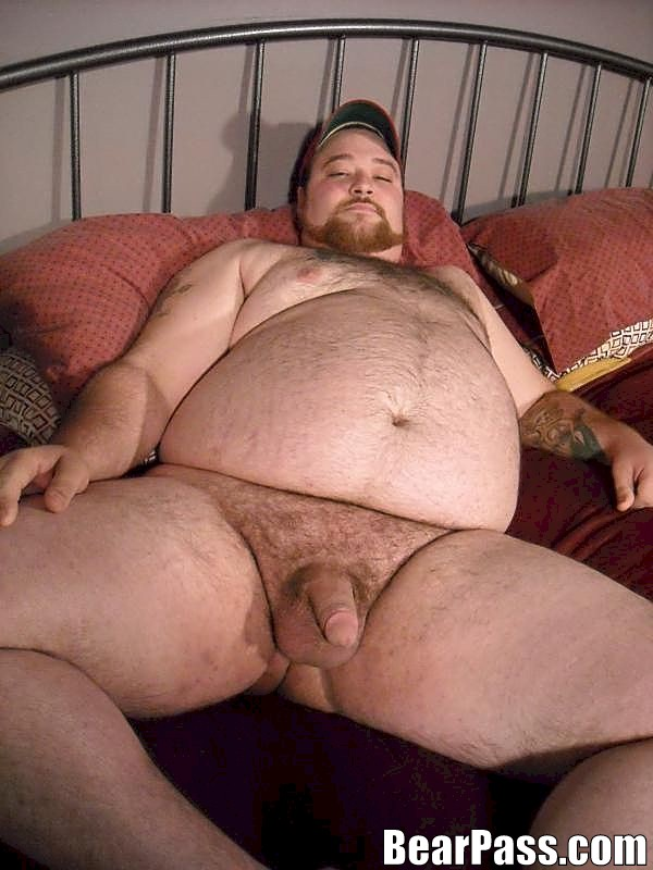 Consider, Chubby bears free gallery congratulate