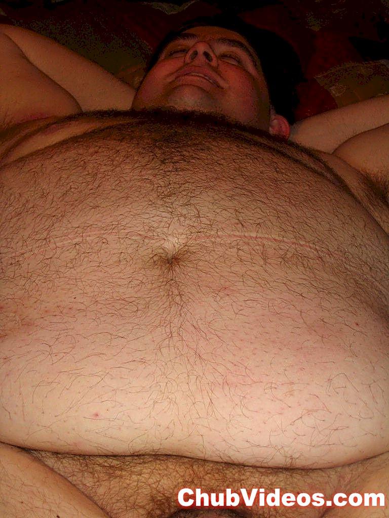 Chubby bears free gallery